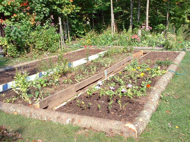 abris jardin bois pas cher