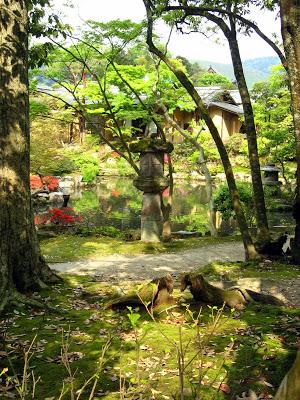jardin japonais d intérieur