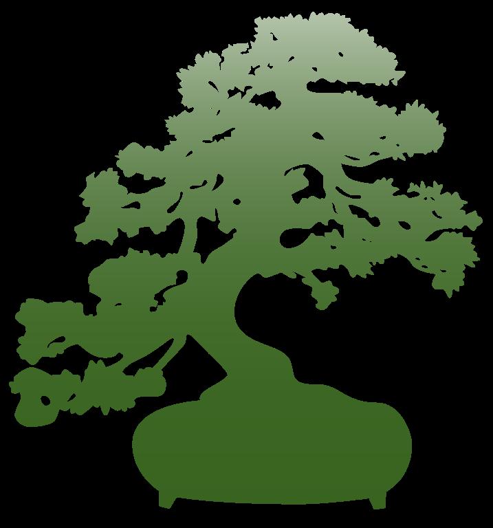 outils bonsai