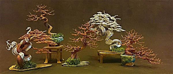 arrosage bonsai