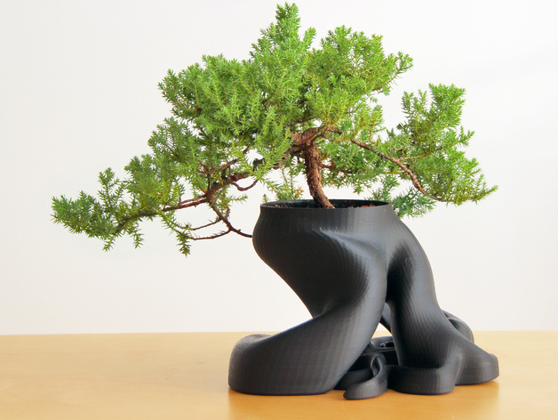 grand pot a bonsai