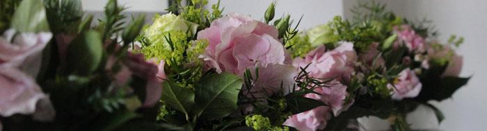 plantes fleuries pour intérieur