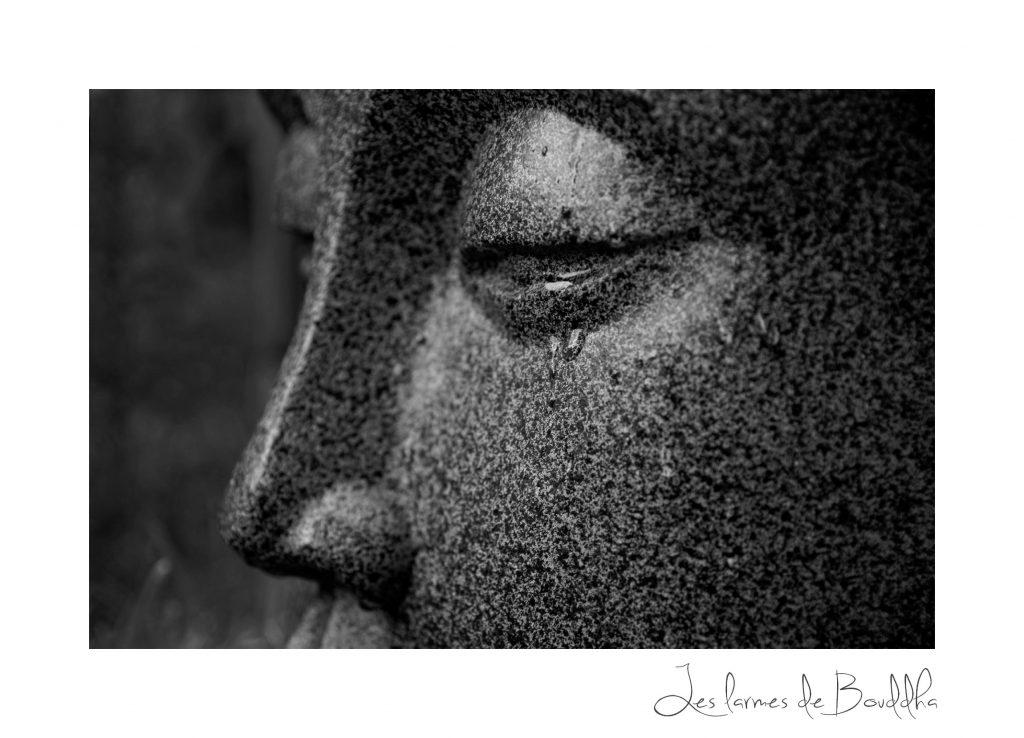 statue de bouddha pour jardin