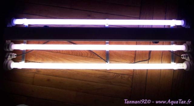 eclairage néons