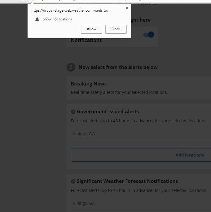 java browser test