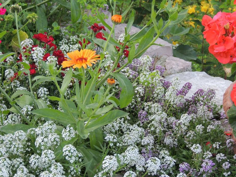 pot de jardin extérieur