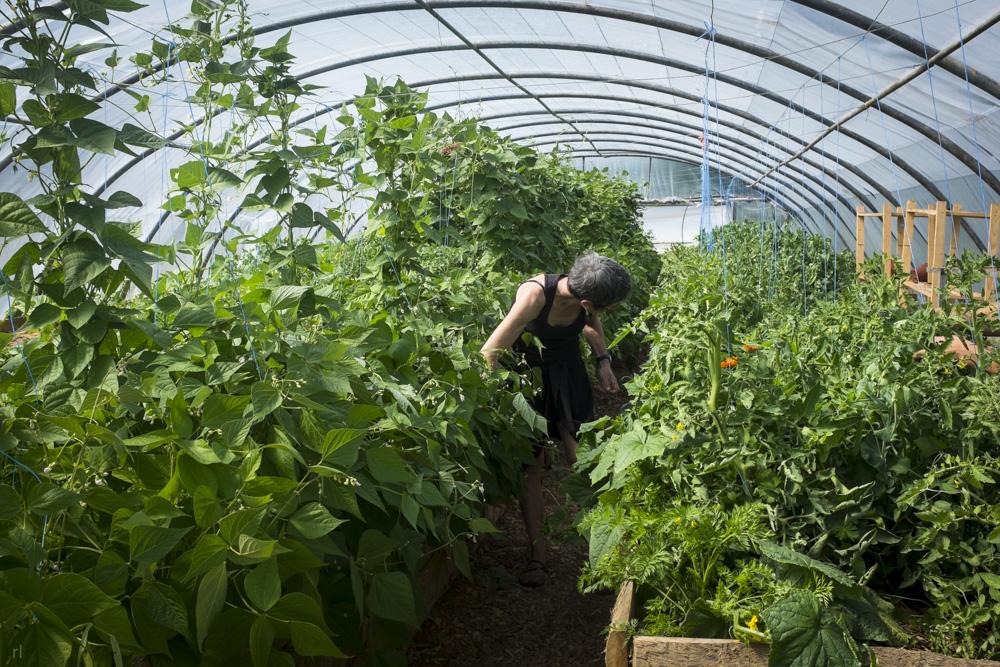 vente de terre de jardin